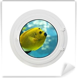 Fototapeta winylowa Hublot i żółta ryba anioł, biały