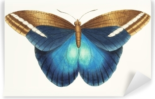 Fototapeta winylowa Ilustracja grafiki zwierząt