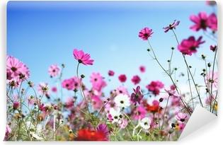 Vinylová Fototapeta Jarní květiny