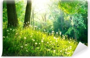 Vinylová Fototapeta Jarní přírody. Krásná krajina. Zelená tráva a stromy