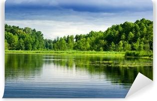 Fototapeta winylowa Jezioro i las.