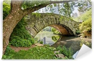 Vinylová fototapeta Kamenný most, Gapstow Bridge, v Central Parku, NY.
