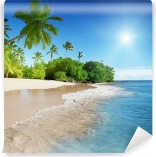 Vinylová Fototapeta Karibské moře a palmy