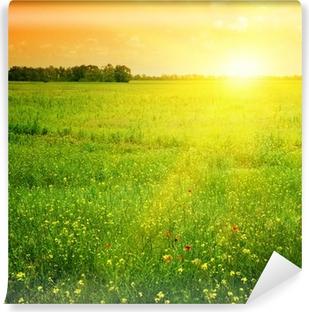Vinylová fototapeta Krásný západ slunce