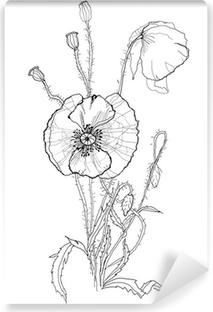 Fototapeta Kresba Stetcem Iris Kvetina Pixers Zijeme Pro Zmenu