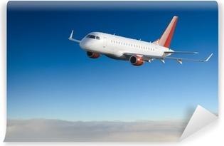 Vinylová fototapeta Letadlo na obloze - osobní letadlo / letadel