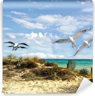 Vinylová Fototapeta Letní dovolená: plážové, mořská a racků
