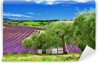 Vinylová Fototapeta Levandule pole a úl v Provence, Francie
