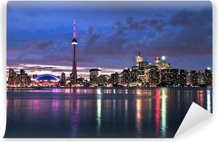 Vinylová Fototapeta Malebný pohled na panoráma města nábřeží Toronto v noci