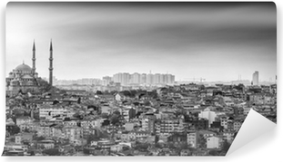 Vinylová Fototapeta Mešita Istanbul s rezidenční čtvrti v černé a bílé