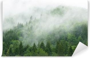 Vinylová Fototapeta Misty forest