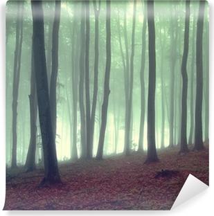 Vinylová Fototapeta Mlha v krásném lese