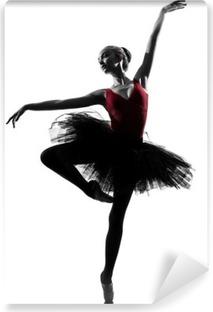 Fototapeta winylowa Młoda kobieta balet tancerz