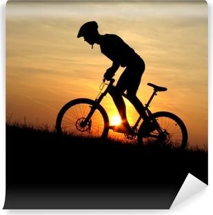 Vinylová Fototapeta Mountain biker