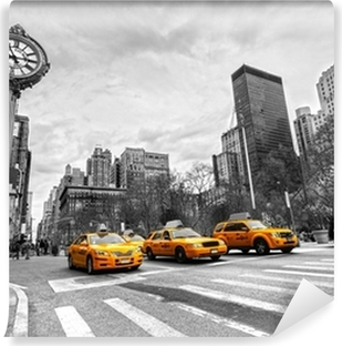 Vinylová Fototapeta New york city usa