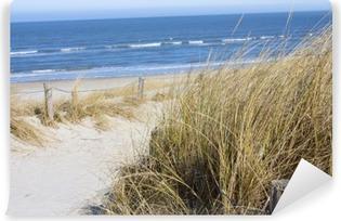 Vinylová Fototapeta Nordsee Beach