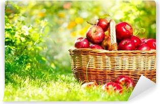 Vinylová Fototapeta Organické Jablka v košíku venkovní