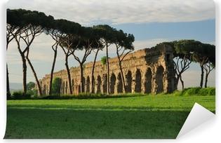 Fototapeta winylowa Park akweduktów, Rzym