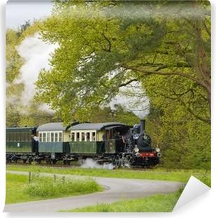 Vinylová Fototapeta Parní vlak, Boekelo - Haaksbergen, Nizozemsko