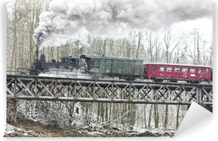 Vinylová Fototapeta Parní vlak v blízkosti Hradsko, Česká republika