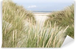Fototapeta winylowa Piaszczyste wydmy w Holandii