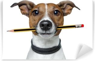 Fototapeta winylowa Pies z ołówka i gumki