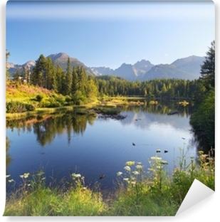 Vinylová Fototapeta Příroda horská scéna s krásným jezerem na Slovensku Tatry - St