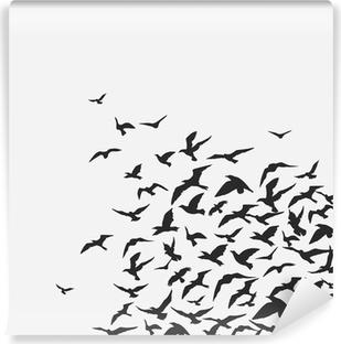 Fototapeta winylowa Ptaki w tle