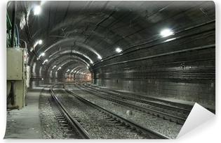 Fototapeta winylowa Pusty tunel metra