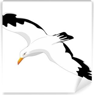 Vinylová Fototapeta Racek stříbřitý Racek Flying-Gabbiano Reale v Volo