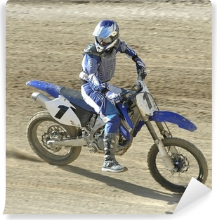 Fototapeta winylowa Racer63