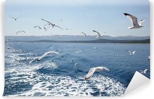 Vinylová Fototapeta Rackové proti moře a nebe