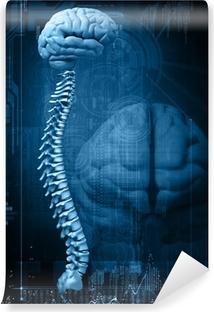 Fototapeta samoprzylepna Abstrakcyjny wzór z mózgu i kręgosłupa