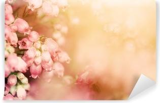Fototapeta samoprzylepna Heather kwiaty na łące jesienią, jesienne słońce w lśniącej settng