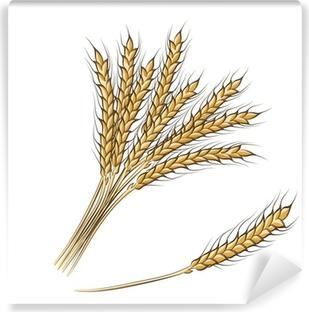 Fototapeta samoprzylepna Kolorowy rysunek odręczny kłosy pszenicy