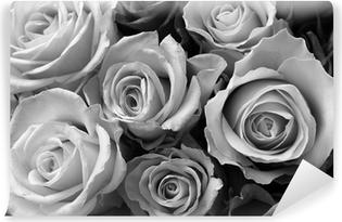Fototapeta samoprzylepna Róże