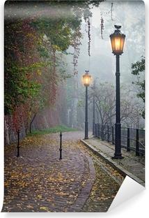 Fototapeta samoprzylepna Tajemnicze alejki w mglisty czasie jesieni z lampami zapalonymi