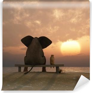 Fototapeta winylowa Słoń i pies siedzieć na plaży latem