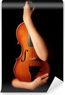 Vinylová Fototapeta Staré housle v rukou ženy