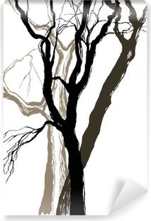 Vinylová Fototapeta Staré stromy kreslení kreslený náčrtek