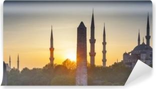 Vinylová Fototapeta Sultanahmet Camii / Modrá mešita, Istanbul, Turecko