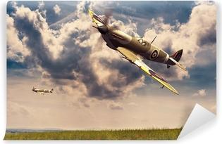 Fototapeta winylowa Supermarine Spitfire
