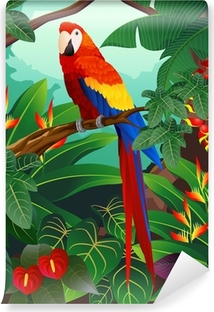 Fototapeta winylowa Szczegółowe ilustracji ptaków ara