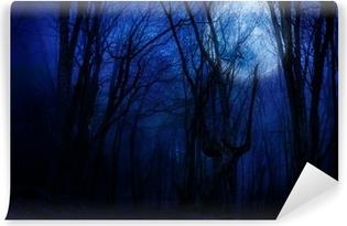Vinylová Fototapeta Temná noc les agaist úplňku