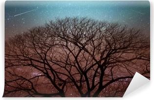 Vinylová Fototapeta Tmavý obrys suchého stromu v noci s hvězdnou oblohou na pozadí