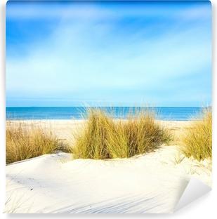 Vinylová Fototapeta Tráva na bílém písku duny na pláž, moře a nebe