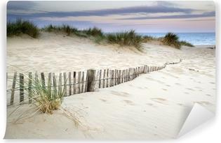 Vinylová Fototapeta Travnatá písečné duny krajina při východu slunce