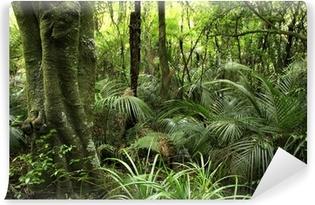 Vinylová Fototapeta Tropical forest