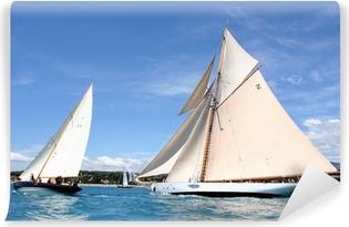 Vinylová Fototapeta Týmový duch Týmový duch plachetnici mořská oceánu jachting regata