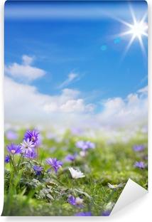 Vinylová Fototapeta Umění květinové jaře nebo v létě na pozadí